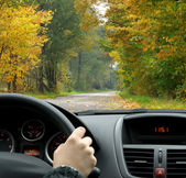 Driving in fall — Stock Photo