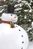 Snowman smiling — Stock Photo