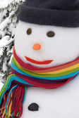 Snowman portrait — Stock Photo