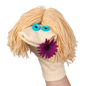 Funny sock puppet with a flower — Stock Photo