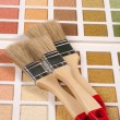 Color palette and brushes - Stock Photo
