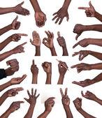 Coleção de gestos de mão — Foto Stock
