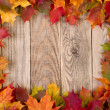 Stock Photo: Fall leaves frame
