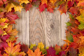 Fall leaves frame — Stock Photo