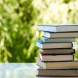 Books — Foto de stock #29839049