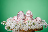 Basket with easter painted eggs and plum cherry flowers — Stock Photo