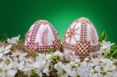 Velikonoční vejce — Stock fotografie