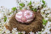 El huevo de pascua — Foto de Stock