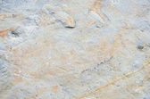 Texture of limestone — Stock Photo