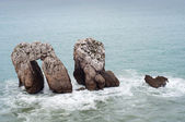 Tree big rocks at the Cantabrian sea — Stock Photo