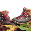 Mountain boots on autumn leaves carpet — Stock Photo #13782163