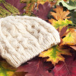 Woolen cap on autumn leaves — Stock Photo #13782232