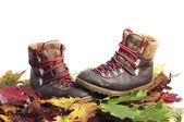 Mountain boots on a autumn leaves carpet — Stock Photo
