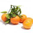 Group of tangerines with leaves, isolated on white background — Stock Photo