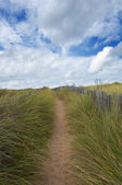 Path surrounded by wooden fence on the dunes, Quiberon, France — Stock Photo