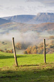 Field fence, with green grass, mountains in the background, and fog, on a cold morning — Stock Photo