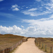 Trails in the dunes on the wild coast of Quiberon, Brittany - Stock Photo