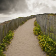 Trails in the dunes on the wild coast of Quiberon, Brittany — Stock Photo