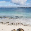 White sand beach and turquoise water in Camaret Sur Mer, France - Stock Photo
