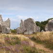 Carnac megalithic stones, Brittany, France — Stock Photo #18831223