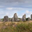 Carnac megalithic stones, Brittany, France - Stock Photo