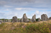 Carnac megalithic stones, Brittany, France — Stock Photo