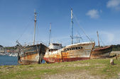 Dilapidated wrecks aground off the coast of Camaret Sur Mer, Brittany, France — Stock Photo
