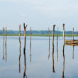 Wooden pier, sticks and reflection on Soustons lake, France — Stock Photo