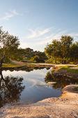 Bella riflessione in un fiume — Foto Stock