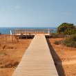 Wooden walkway on cliffs, Algarve coast, Portugal — Stock Photo #34752055