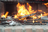 Fire, wood and coals in the barbecue — Stock Photo