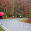 Mwith umbrellwalking on forest road. Rainy autumn day — Stock Photo #37080779