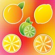 Lemon, lime and orange stickers — Stock Vector