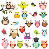 Set of owls — Vettoriale Stock