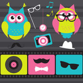 Set of retro elements and owls — Stock Vector