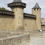 France. Carcassonne. — Stock Photo #15772677
