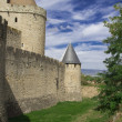 France. Carcassonne. — Stock Photo #15773121