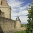 France. Carcassonne. — Stock Photo #15773135