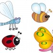 Stock Photo: Insects