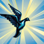 Dove illustration — Stock Photo