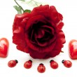 Red rose with heart candles — Stock Photo #12543912