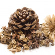Stock Photo: Potpourri with straw flower