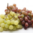 Dark and bright grapes — Stock Photo