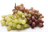 Dark and bright grapes — Stock Photo