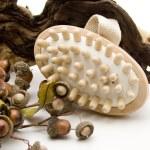 Massage brush with acorns — Stock Photo