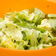 Iceberg salad in Bowl — Foto de Stock