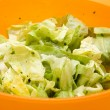 Iceberg salad in Bowl — Stockfoto