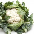 Fresh Cauliflower — Stock Photo #14629467