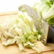 Fresh endive salad — Stock Photo #14637957