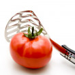 Shrub tomato — Stock Photo